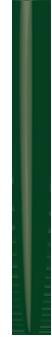 FGフォレストグリーン